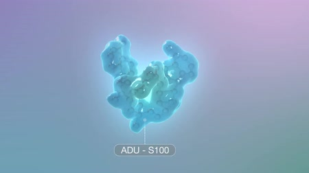 capillary : ADU-S100 Combines with Checkpoint Inhibition to Anti-Tumor CD8 + T Cell Response to Control Non-Injected Tumors. Stock Footage