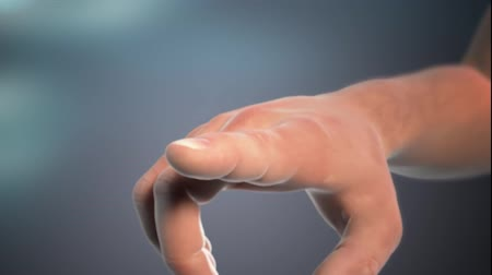 インナー : Realistic 3D Animation of the inner structure of the finger