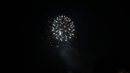bronx : Fourth of July fireworks at Coop City community. Taken July 4, 2016 in  New  York. Stock Footage