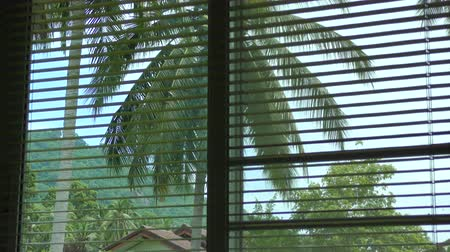 persiana : Opening - closing Jalousie tropical view from the window Stock Footage