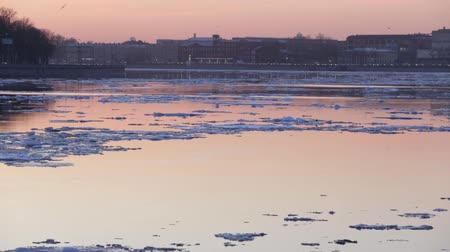kwiecień : Spring floating of ice on Neva River in St. Petersburg. Petersburg, Russia