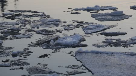 thaw : Floating ice floes on Neva River in St. Petersburg, Russia