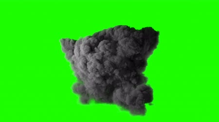 fireball : Realistic fireball explosion with huge smoke blast 3D animation. Isolated on green screen VFX action element. Powerful massive gasoline detonation with flame and smoke puff. Alpha channel included. 4K Stock Footage