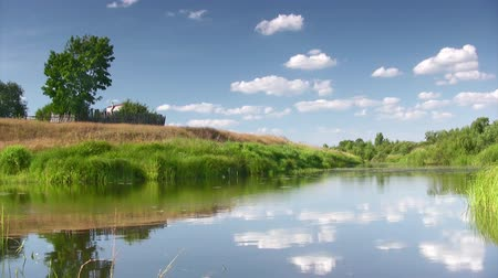 kırsal : Countryside landscape with river,lone tree and clouds Stok Video