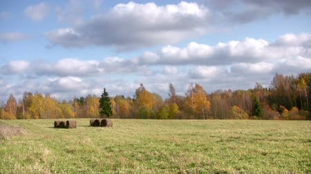 polního : Autumn timelapse  with clouds and hay bales