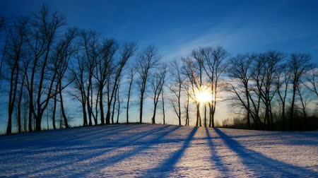osika : Time lapse shoot of sunset in the winter forest