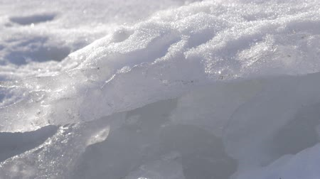 fascinante : Dirty ice chunk in frozen sea. Dolly shot.
