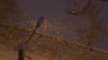 Snow falling on the background of a street lamp in the city at night. Out of focus.