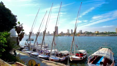 nil : The yacht club on Corniche El Nil in Downtown, traditional feluccas are rocking on the waves with Giza cityscape on background, Cairo, Egypt. Stok Video