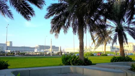 набережная : The view on Amiri Diwan government complex and traffic along Al Corniche street through the lush palms of seaside promenade, Doha, Qatar. Стоковые видеозаписи