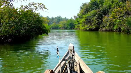 mianmar : Kayak floating along the narrow creek of Kangy river amid the lush mangrove thickets, Chaung Tha, Myanmar.