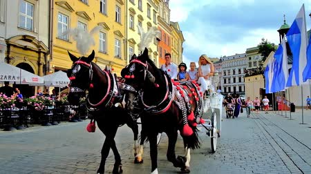 kamienice : KRAKOW, POLAND - JUNE 10, 2018: The tourists enjoy the carriage rides along the  Market Square with a view on old mansions, outdoor cafes and scenic restaurants, on June 10 in Krakow. Stock Footage