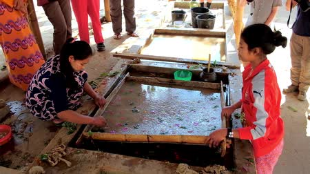dut : PINDAYA, MYANMAR - FEBRUARY 19, 2018: The artisans perform Shan paper production process, they pull out the wooden frame with row paper from the water tank, on February 19 in Pindaya.