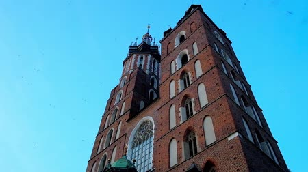 main : The swallows fly around the tall Gothic  bell towers of St Mary Basilica with a dark blue evening sky on background, Krakow, Poland.