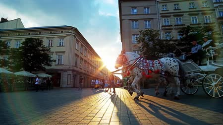 kamienice : KRAKOW, POLAND - JUNE 12, 2018: Enjoy the sunset from Main Market square with a view on riding horse-drawn carriage, that creates long shadow on the shiny pavement, on June 12 in Krakow