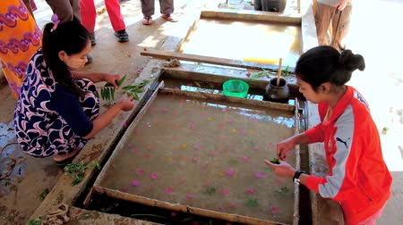 dut : PINDAYA, MYANMAR - FEBRUARY 19, 2018: Demonstration of natural Shan paper production from botanical ingredients, using old traditional technology, on February 19 in Pindaya.