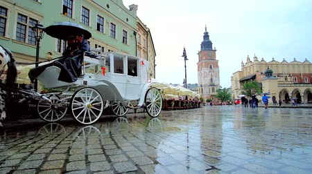 sukiennice : KRAKOW, POLAND - JUNE 13, 2018: The puddles on pavement of Main Market Square reflect the city landmarks (City Hall Tower and Cloth Hall)  and riding horse-drawn carriages, on June 13 in Krakow.