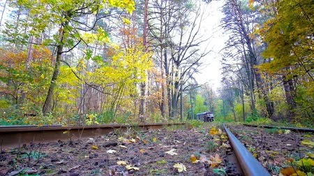 ground : KIEV, UKRAINE - OCTOBER 21, 2018: Visit Pushcha-Voditsa climate resort and enjoy vintage trams, riding in autumn forest, on October 21 in Kiev.