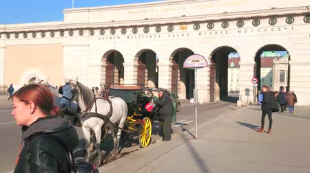 barocco : VIENNA, AUSTRIA - FEBRUARY 17, 2019: The stop of horse-drawn carriages in front of the Outer Castle Gate (Ausseres Burgtor) of Hofburg in Heldenplatz (square), on February 17 in Vienna. Filmati Stock