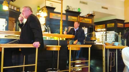 viennese : VIENNA, AUSTRIA - FEBRUARY 18, 2019: Relaxed atmosphere in classic Viennese bar, men enjoy wine and beer at the bar counter, on February 18 in Vienna. Stock Footage
