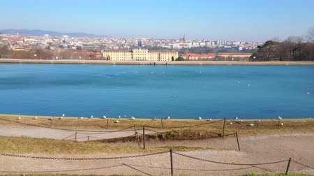 manor : The strong wind on the top of Schonbrunn hill creates the patterns of ripples on water surface of the pond, Vienna, Austria.