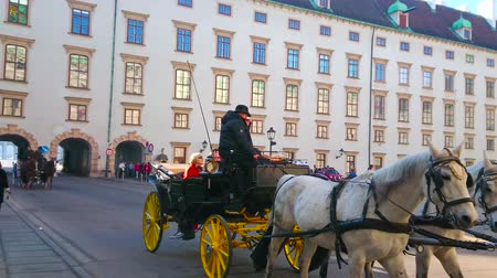 hofburg : VIENNA, AUSTRIA - FEBRUARY 17, 2019: Enjoy the pleasant ride in horse-drawn carriage along In Der Burg courtyard of Hofburg Palace, on February 17 in Vienna.