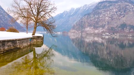 hallstatter see : The lush tree on the bank of Badeinsel recreational park is reflected on mirror surface of Hallstattersee lake, Hallstatt, Salzkammergut, Austria.