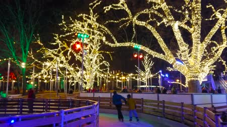 rathauspark : VIENNA, AUSTRIA - FEBRUARY 18, 2019: The joyful winter ice skating rink in Rathauspark becomes miraculous in evening, when the lanterns and garlands on the trees light up, on February 18 in Vienna.