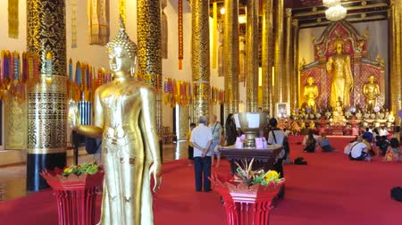 luang : CHIANG MAI, THAILAND - MAY 2, 2019: Splendid interior of the wihan (hall) of Intakhin Pillar Vihara shrine of Wat Chedi Luang Temple with golden Buddha images and tall columns, on May 2 in Chiang Mai