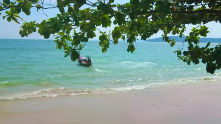 aonang : AO NANG, THAILAND - APRIL 25, 2019: The view through the swaying fig tree branches on the lonely longtail boat, departing from the shore of Andaman sea, on April 25 in Ao Nang Stock Footage