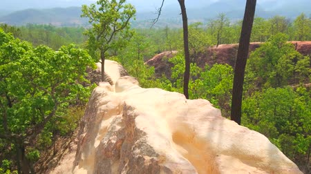 indochina : Impressive landscape of Pai Canyon (Kong Lan) with narrow cliffs of dehydrated yellow clay, rising above the forest level, Thailand