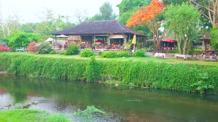 siamês : The old wooden house with lush green garden and blooming flame tree on the bank of Pai river in Pai town, Thailand Stock Footage