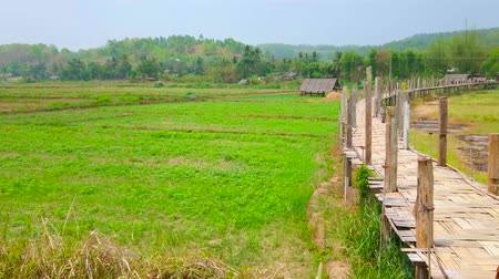 poo : Panorama of Su Tong Pae Bamboo Bridge, surrounded by paddy fields and gardens of the village in Mae Hong Son suburb, Thailand