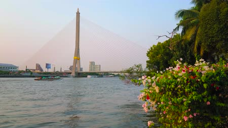Бангкок : BANGKOK, THAILAND - APRIL 24, 2019: Enjoy the evening in Santi Chai Prakan riverside park with a view on Chao Phraya river, Rama XIII bridge and blooming bougainvillea bushes, on April 24 in Bangkok