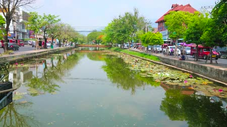 siamês : CHIANG MAI, THAILAND - MAY 4, 2019: The old town moat, that surrounds the medieval fortress, today its lined by lush trees and busy roads, on May 4 in Chiang Mai