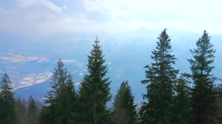trilhas : BAD ISCHL, AUSTRIA - FEBRUARY 20, 2019: Panorama of misty Hallstattersee valley through the coniferous forest on the slope of Mount Katrin, on February 20 in Bad Ischl