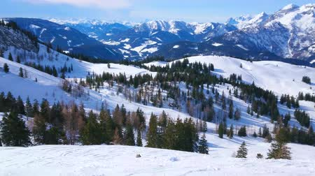 trilhas : The peaks of Dachstein West Alps are covered with snow and the lush spruce forests are growing on their slopes, seen from Zwieselalm mountain, Gosau, Austria