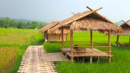 gleba : The scenic bamboo lounge pavilions, located in a paddy field and connected with each other by a narrow bamboo bridge, Chiang Rai suburb, Thailand