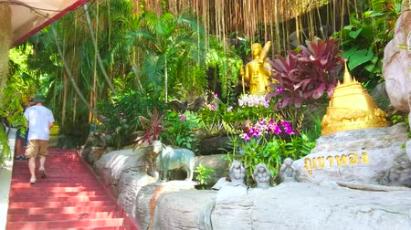 orquídeas : BANGKOK, THAILAND - APRIL 24, 2019: Stairs through the lush garden of Golden Mount (Wat Saket) Temple with aerial roots of banyan tree, bromeliads, statues and small gilt chedi, on April 24 in Bangkok