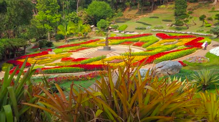 falu : CHIANG RAI, THAILAND - MAY 9, 2019: Enjoy the scenic flower beds of Mae Fah Luang through the colorful bromeliad garden with many different species, Doi Tung, on May 9 in Chiang Rai Stock mozgókép