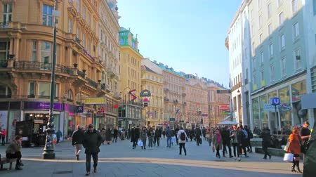 semt : VIENNA, AUSTRIA - FEBRUARY 18, 2019: The Graben in central part of Vienna is a perfect place to make shopping and enjoy surrounding historical edifices and landmarks, on February 18 in Vienna. Stok Video