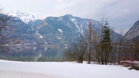 falu : The snowy bank of Hallstattersee lake with small trees, huge Salzberg mount and town of Hallstatt on the background, Salzkammergut, Austria Stock mozgókép