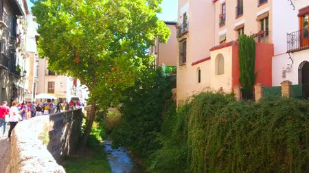 semt : GRANADA, SPAIN - SEPTEMBER 25, 2019: The lush greenery in gorge of Darro river, stretching along Carrera del Darro street in Albaicin district of Old Town, on September 25 in Granada Stok Video