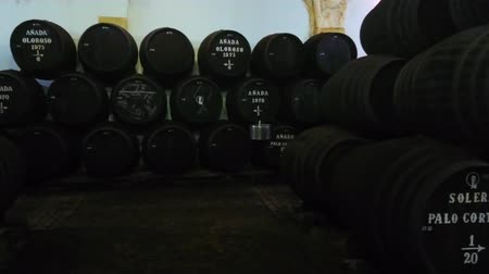 beczka : JEREZ, SPAIN - SEPTEMBER 20, 2019: Panorama of stacked vintage oak casks with ageing sherry wine in Bodega Tradicion, on September 20 in Jerez Wideo