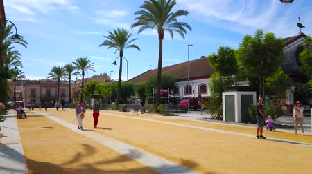 mercado : SANLUCAR, SPAIN - SEPTEMBER 22, 2019: The pablic park in Calzada Duquesa Isabel avenue with tall palms and building of Bodegas Hidalgo la Gitana winery on the right site, on September 22 in Sanlucar Stock Footage