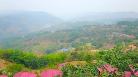 The foggy mountain scenery of agricultural region of Chiang Rai suburb with emerald tea plantations of Mae Salong Chinese Yunnan tea village, Thailand
