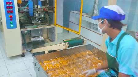 fabryka : PHUKET, THAILAND - APRIL 30, 2019: The worker of cashew nuts factory packs the plastic bags with nuts to a big box in manufacturing facility, on April 30 in Phuket