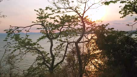 indianin : Watch fiery sunset through the jungle, hiding Andaman sea, Ao Nang, Krabi, Thailand Wideo