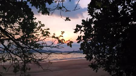 indianin : Romantic evening on the Ao Nang beach with a view on bright sunset sky through the trees branches, Krabi, Thailand Wideo
