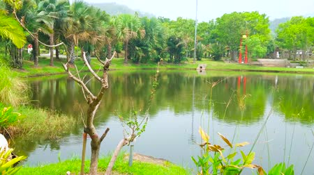 kertészet : Relax by the lake in scenic shady Royal Park Rajapruek (Ratchaphruek), enjoy the lush greenery, palm alley and pavilions of International gardens, located on the opposite bank, Chiang Mai, Thailand